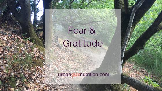 Fear & Gratitude